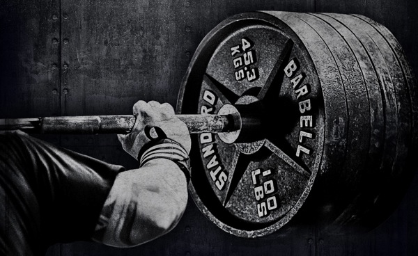 animal powerlifting wallpaper